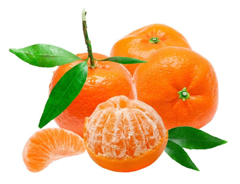 Рецепт мандариновой браги