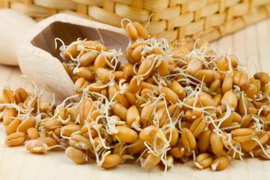 пшеница с ростками