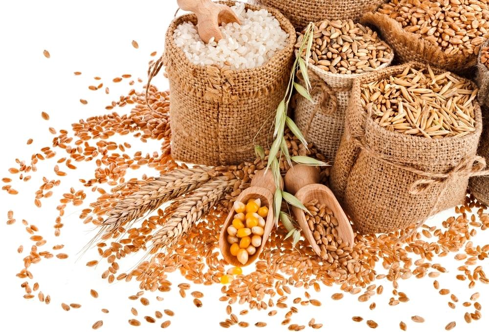 Выбор зерна для браги